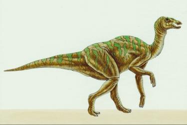 Hadrosaurus-10541