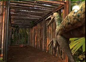 Troodon 1