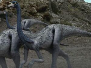 1x1 Ornithomimus
