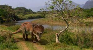 Triceratops Creek