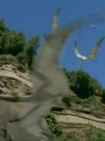 File:Nyctosaurus In T-Rex Returns.jpg