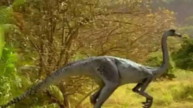 Prehistoric Park Episode 3 Dino Birds-1