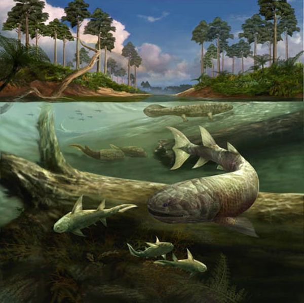 животные девонского периода картинки создании стандартного