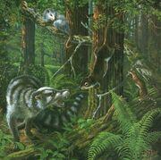 Paleocene-forest