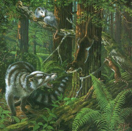 File:Paleocene-forest.jpg