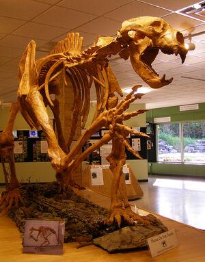 Arctodus esqueleto