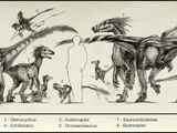 Dromaeosauridae
