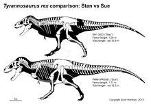 Stan n sue comparison by scotthartman-d5yvql0