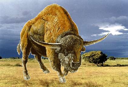 Q Es Bisonte Bison latifrons | Wiki...