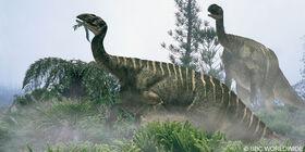 Plateosaurus-800