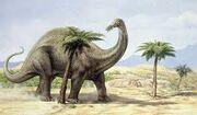 Apatosaurio 2