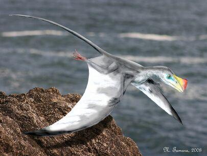 Austriadactylus by NTamura 28f4