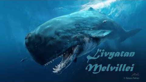 El Livyatan Melvillei, la ballena asesina del Perú - Prehistopedia 000