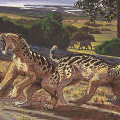 Arctodus y <a href=