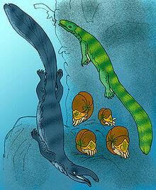 250px-Thalattosauridae