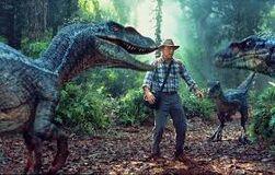 Velociraptores macho