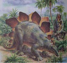 Muhuru stegosaurus