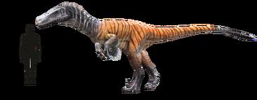 Austroraptor--