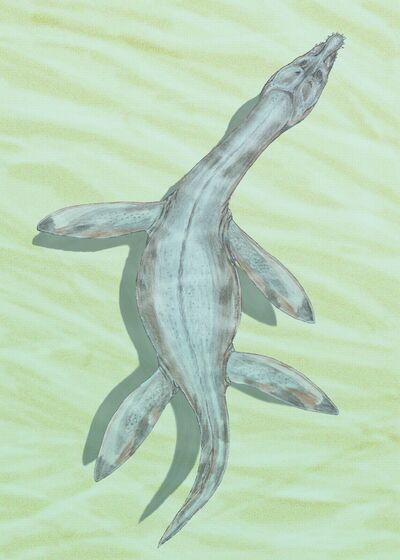Rhomaleosaurus crampt12DB