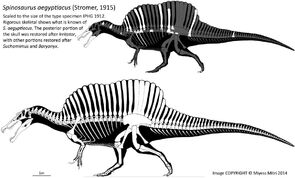 Spinosaurus revised by miyess-d7x9vrl