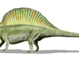 Ctenosauriscus