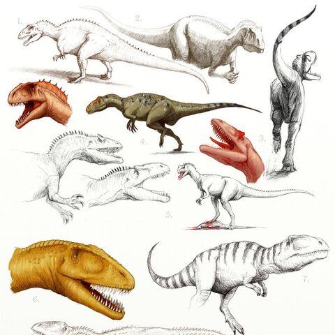 1. Acrocanthosaurus 2., 5. Allosaurus 3. Saurophaganax 4. Sinraptor 6. Carcharodontosaurus 7. Giganotosaurus 8. Mapusaurus 9. Yangchuanosaurus 10. Australovenator 11. Tyrannotitan 12. Neovenator