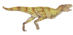 Aucasaurus.