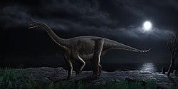 250px-Melanorosaurus readi steveoc