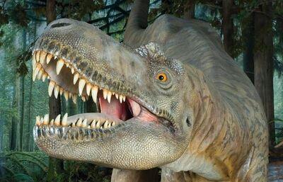 Albertosaurus1