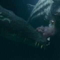 Liopleurodon comiendo un <a href=