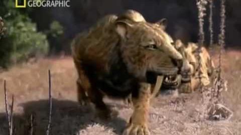 Cazadores prehistóricos (Tigre dientes de sable)