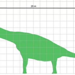 Brachiosaurus a escala.