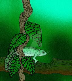 Anqingosaurus brevicephalus