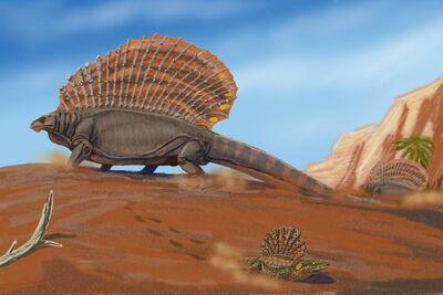 800px-EdaphosaurusDB