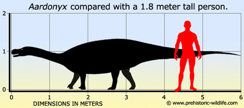Aardonyx-size
