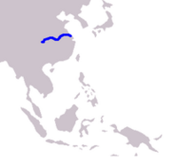 Cetacea range map Chinese River Dolphin