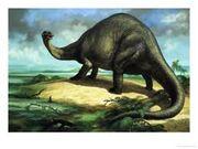 Apatosaurio 3
