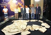 Concavenator fossils 02