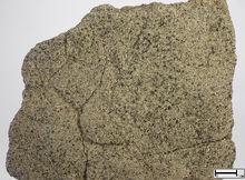 Оболовый песчаник
