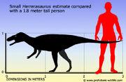 Herrerasaurus-size