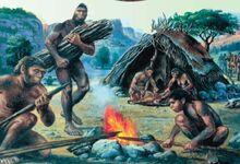 Жилище неандертальца