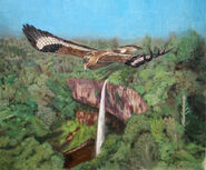 Prehistoric safari the mightiest eagle soaring by jagroar-dati9e8