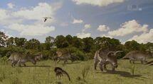 Когда по Америке бродили динозавры