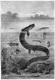 Paris region during the Cretaceous sea, End of the reign of the great mosasaur, vintage engraved illustration. Earth before man – 1886.