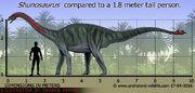 Shunosaurus-size