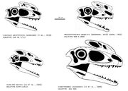 Proceratosauridae pt 2 by trodonto-d3hvltm