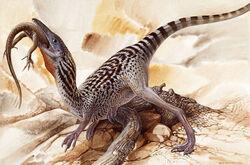 Compsognathus-1