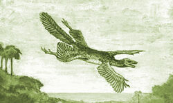 A hypothetical Tetrapteryx, as imagined by William Beebe (1915)