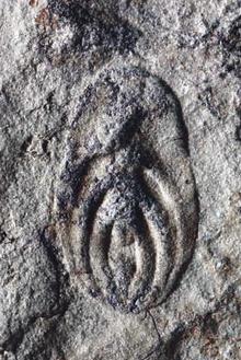 Паравендия