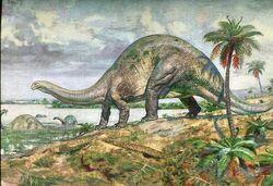 Апатозавр6